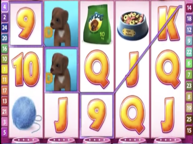 Cute and Fluffy Free Slot Game
